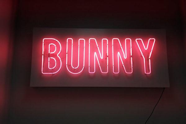bunny-ssl